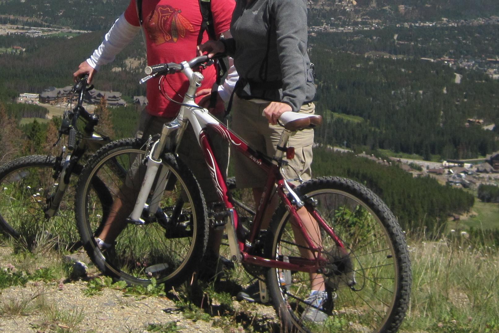 2009 Trek Women's 4300   Chicago Stolen Bike Registry